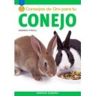 50 consejos de oro para tu conejo