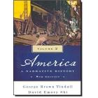 America. A Narrative History. Vol 2