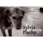 Sylvia Plachy. De reojo. Out of the corner of my eye