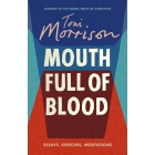 Mouth Full Of Blood. Essays, Speeches And Meditations