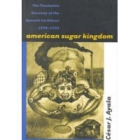 American sugar kingdom (The plantation economy of the spanish Caribbean, 1898-1934)