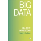 Big data. Una breve introducción
