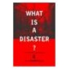 What is a disaster? perspectives on the question