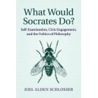 What would Socrates do? Self-examination, civic engagement, and the politics of philosophy