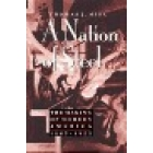 A nation of steel. The making of modern America 1865-1925